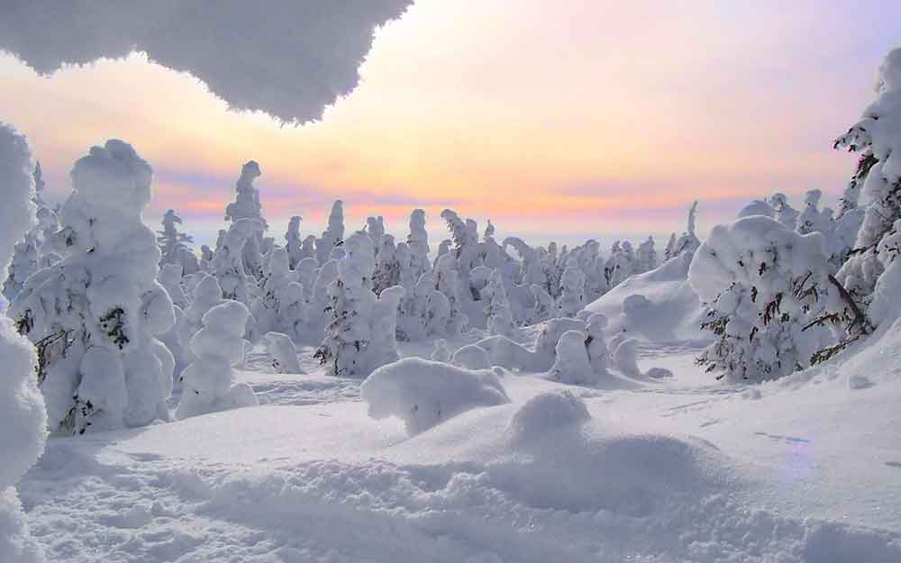 PAYSAGE HIVER QUEBEC CANADA