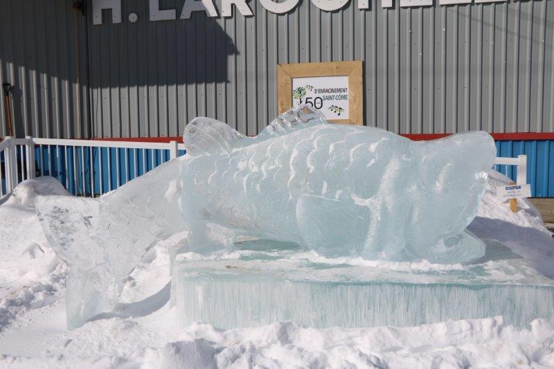 festival St Côme en glace 2017-québec 67